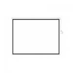 Экран, Deluxe, DLS-M305x229W, Настенный/потолочный, Рабочая поверхность 297x221 см., 4:3, Matt white, Белый